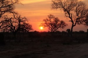 britta safari sunset