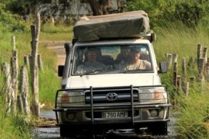 Botswana self drive safari adventure