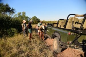 Ecotraining Karongwe Game Drive Flat Tier