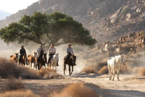 Namibia horse riding group