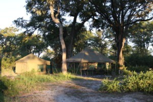 Trans Okavango boating expedition camp