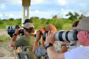 botswana photo safari boating chobe national park
