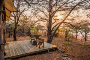 changa safari camp deck view