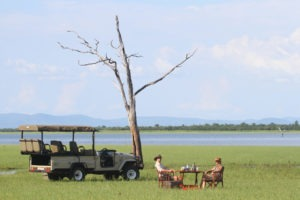 changa safari camp game drive