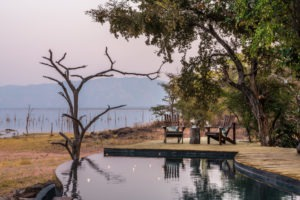 changa safari camp pool view