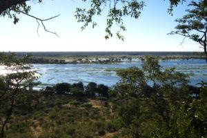 chobe elephant camp view from camp
