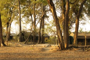 footsteps guest tents