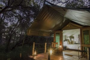 mashatu tented camp tent night