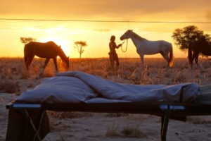 namibia horse riding bedroom