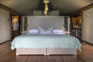 ngala tented camp guest tent