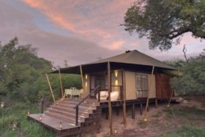 ngala tented camp guest tent exterior1