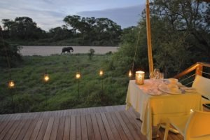 ngala tented camp private dinner