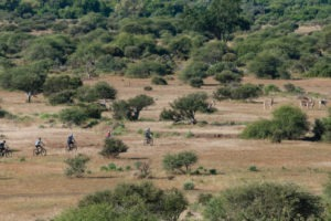 northern tuli botswana cycling safari aerial photo