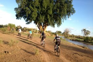 northern tuli botswana cycling safari mashatu tour