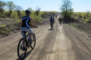 northern tuli botswana cycling safari riding along road