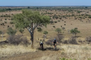 northern tuli botswana cycling safari view acorss landscape
