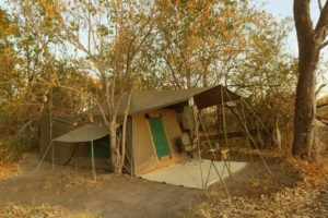 okavango delta bush skills training Kwapa Camp accommodation