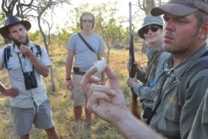 okavango delta bush skills training nature skills
