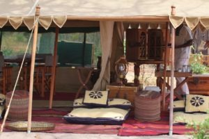 selinda explorers camp lounge