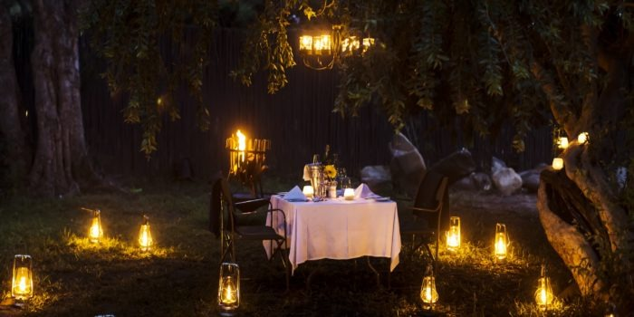 simbavati timbavati romantic dinner