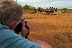 Greater kruger national park photographic safari