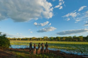 Greater kruger national park walking hiking tour