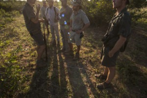 Greater kruger national park walking safari in wilderness