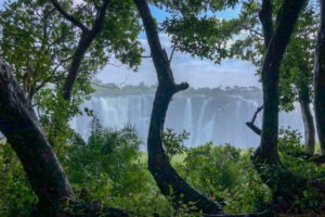 Victoria Falls View from Zimbabwe Trees