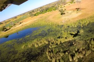 Northen Botswana Okavango Delta Scenic Flight