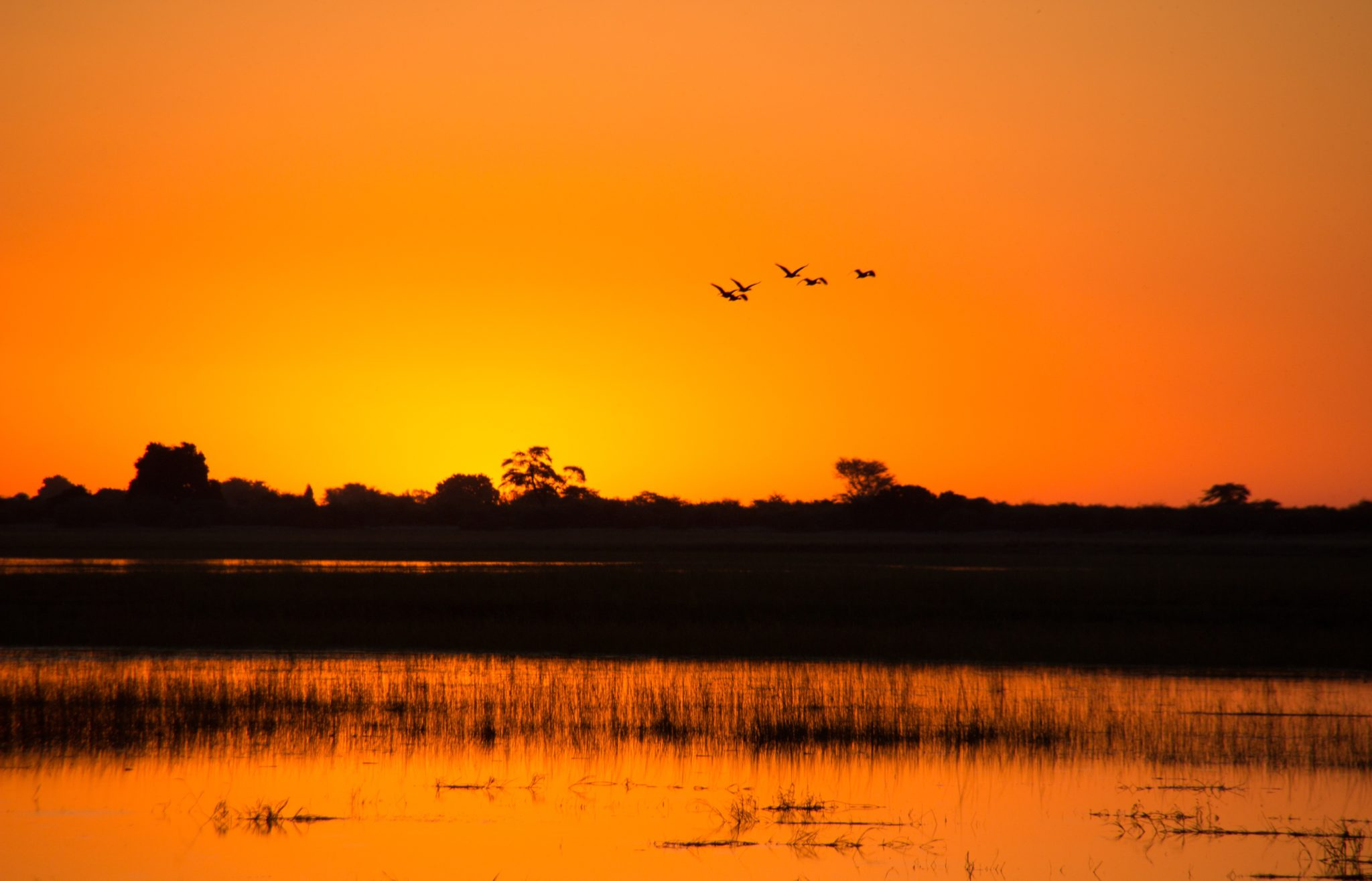 Northern Botswana Chobe Sunset