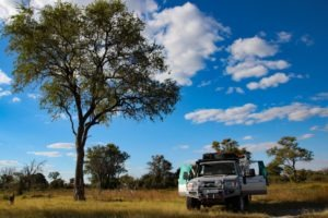 Nothern Botswana Khwai Self Drive Safari Camping
