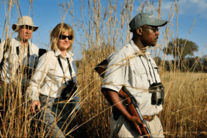 Okavango delta guest and guide walking safari