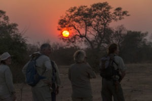 camp chitake mana pools sunset