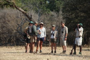 camp zambezi mana pools interpret