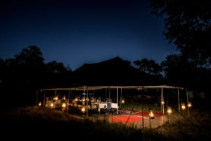 golden africa safaris dinner night scape