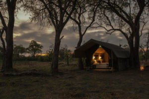 golden africa safaris tent night