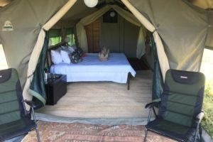 golden africa safaris tent outside
