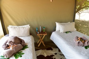 lower zambezi tusk and mane tent interior