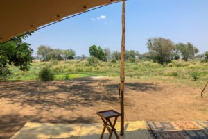 lower zambezi tusk and mane tent view