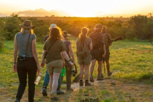 lowveld trails co south africa walking safaris guests sunset