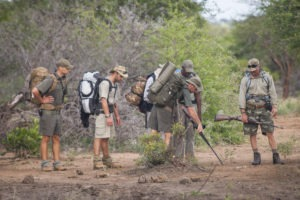 timbavati wlaking trails learning