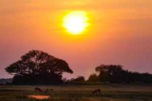 west zambia sunset