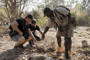 zambezi expeditions mana pools guide walking