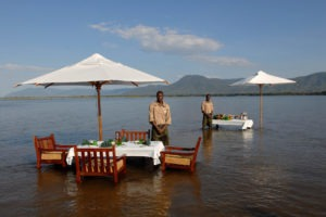 zambia lower zambezi sausage tree camp water dining