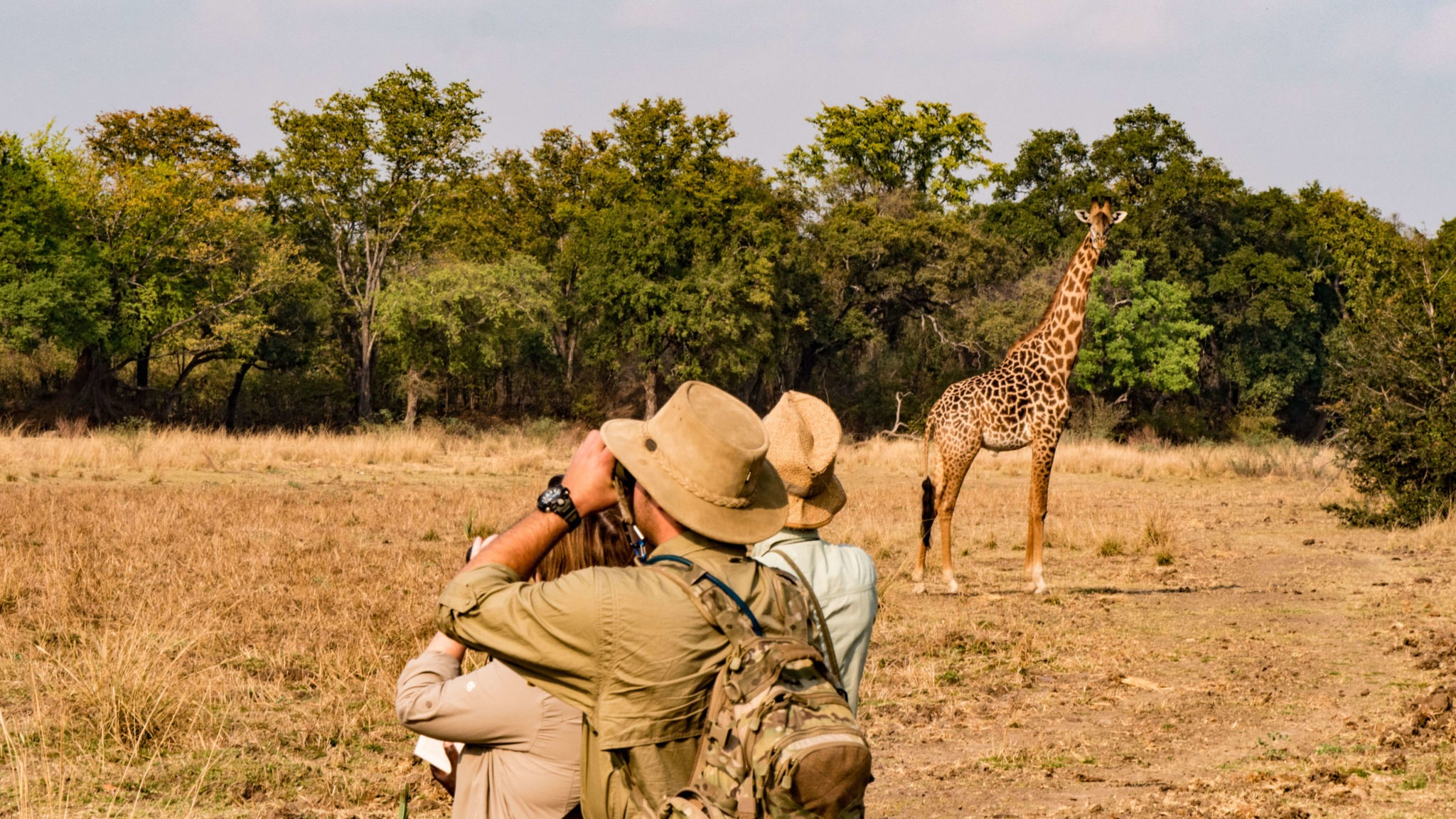 zambia luangwa valley walking safari frank tour