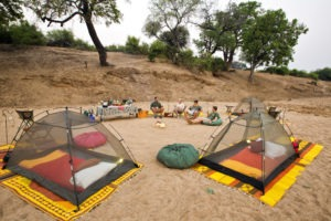 gonarezhou walking safaris camp guests