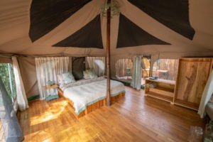 manyara green camp room entire