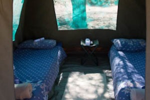mobile camp dome ultimate safaris interior