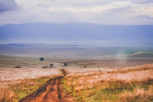 tanzania safaris road to crater