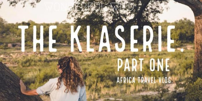 klaserie safari sundays part one